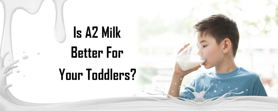 Is Desi Cow Milk Better for Your Toddlers?