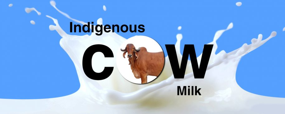 Detailed Information - Indigenous Desi Cows Milk in India