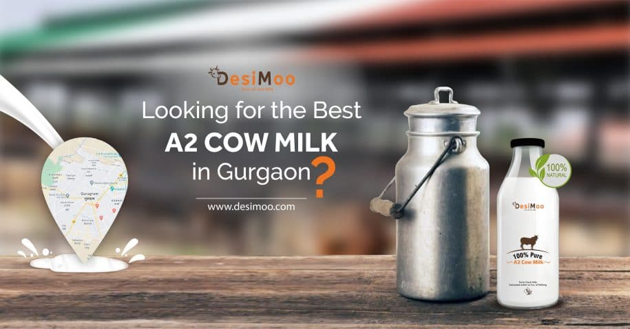 Looking For The Best A2 Cow Milk Supplier in Gurgaon