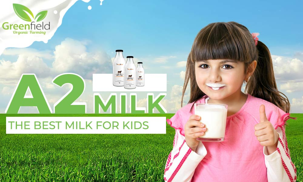 Benefits of A2 Cow Milk For Kids